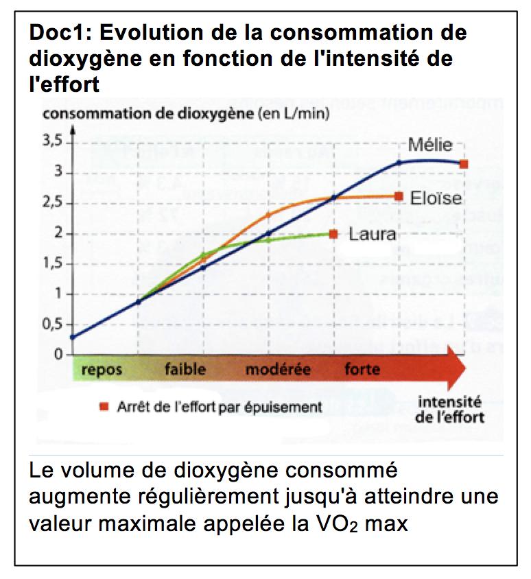 Existe T Il Des Limites A L Effort Physique Svt 5eme Forain Francois Verdier De Leguevin